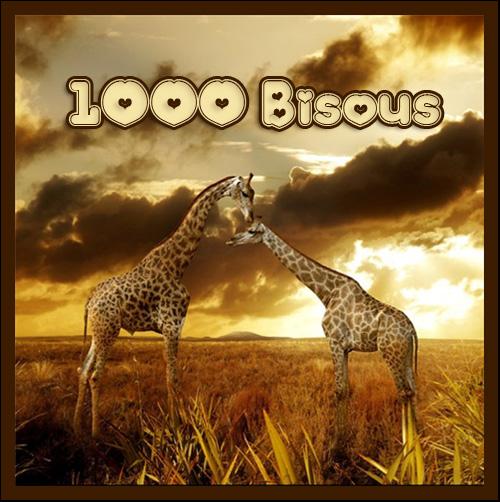 bisous-girafes-belle-image-flora