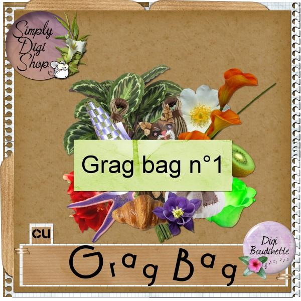 http://img48.xooimage.com/files/4/f/7/boudinette_gragbag1_cu-17b864f.jpg