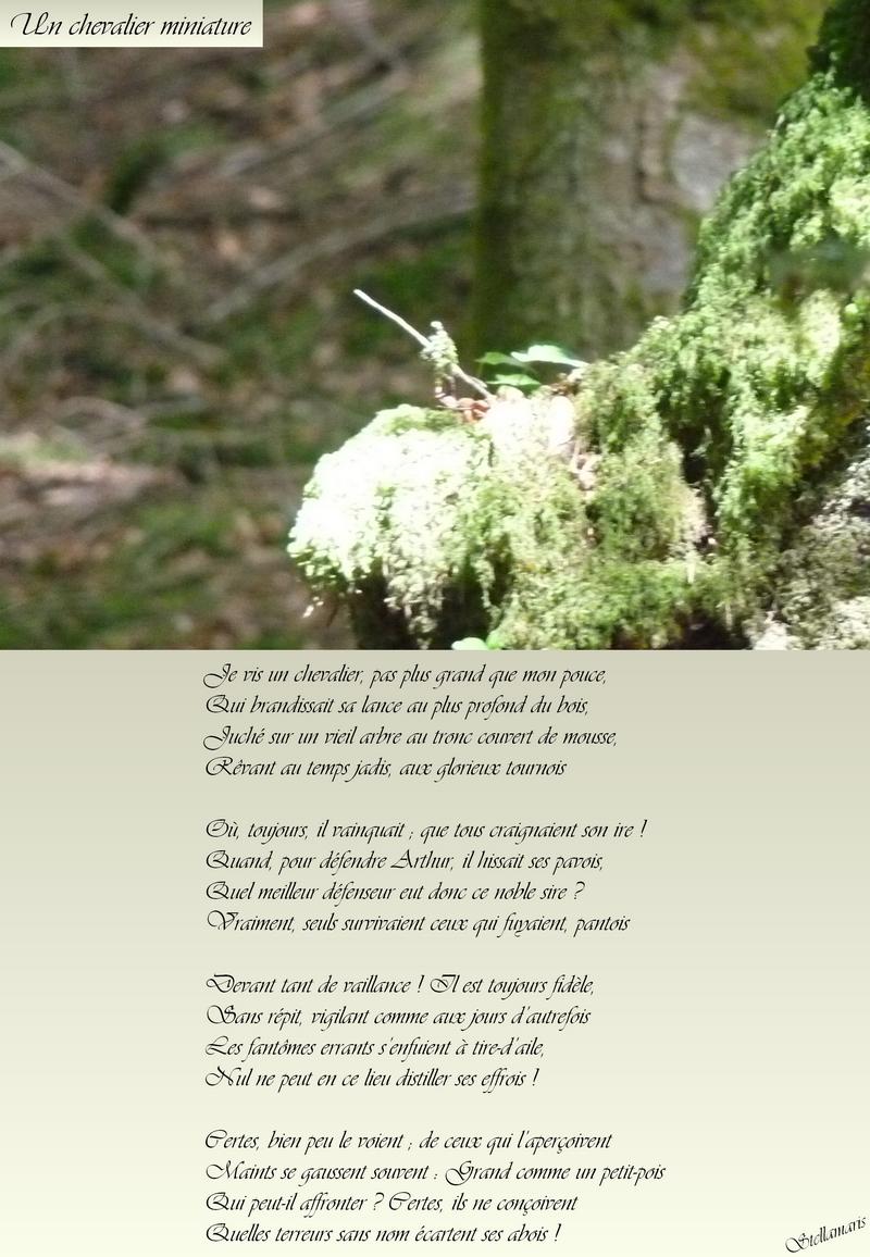 Un chevalier miniature / / Je vis un chevalier, pas plus grand que mon pouce, / Qui brandissait sa lance au plus profond du bois, / Juché sur un vieil arbre au tronc couvert de mousse, / Rêvant au temps jadis, aux glorieux tournois / / Où, toujours, il vainquait ; que tous craignaient son ire ! / Quand, pour défendre Arthur, il hissait ses pavois, / Quel meilleur défenseur eut donc ce noble sire ? / Vraiment, seuls survivaient ceux qui fuyaient, pantois / / Devant tant de vaillance ! Il est toujours fidèle, / Sans répit, vigilant comme aux jours d'autrefois / Les fantômes errants s'enfuient à tire-d'aile, / Nul ne peut en ce lieu distiller ses effrois ! / / Certes, bien peu le voient ; de ceux qui l'aperçoivent / Maints se gaussent souvent : Grand comme un petit-pois / Qui peut-il affronter ? Certes, ils ne conçoivent / Quelles terreurs sans nom écartent ses abois ! / / Stellamaris