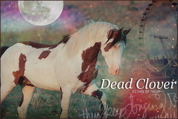 (c)  nuty. Dead-clover02-02-12dd5a3