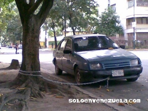 Imagenes Chistosas! One more time!  YEAH! XD - Página 4 Carro-protegido-s...talmente-1379f7d