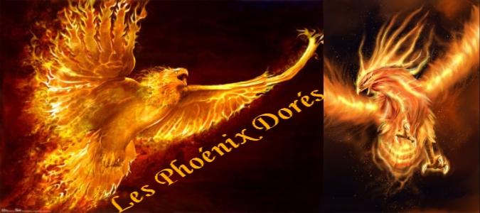 les phoenix dorés Index du Forum