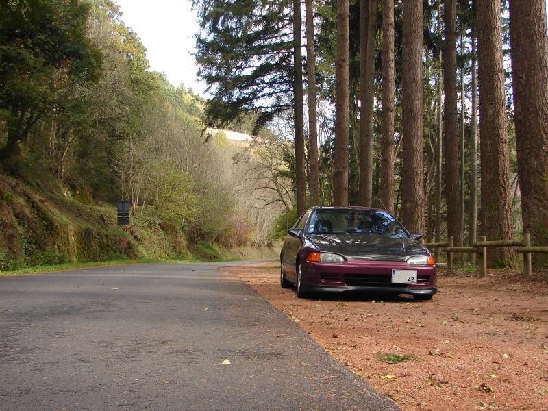 EJ1 camélia by dam's42 - Page 2 Coup-aut-003-1471cce