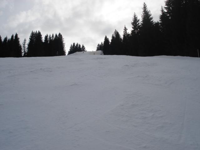 Moineau / Megève Jaillet Dsc03897-8c9536