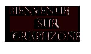 GraphZone Bienvenue-104f594