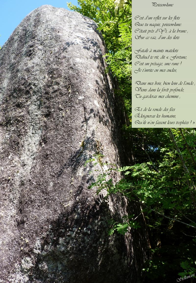 Poisson-lune / / C'est d'un reflet sur les flots / Que tu naquis, poisson-lune. / C'était près d'Ys, à la brune ; / Sur ce raz, d'un des ilots / / Fatals à maints matelots / Dahud te vit, dit « Fortune, / C'est un présage, une rune ! / Je t'invite en mes enclos, / / Dans mes bois, bie, loin de l'onde ; / Viens dans la forêt profonde, / Tu garderas mes chemins ; / / Et de la ronde des fées / Éloigneras les humains, / Qu'ils n'en fassent leurs trophées ! » / / Stellamaris